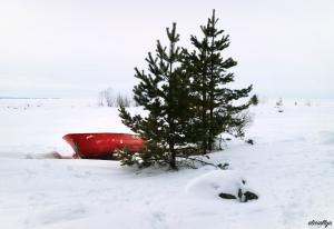 Snow Row