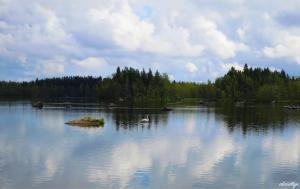 Swan Lake (summer)
