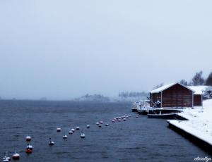 Winter Dock