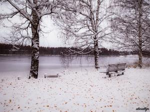 Autumn Snow III
